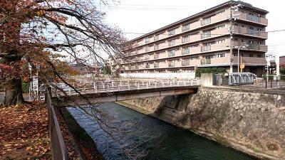 京都の秋月橋
