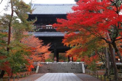 京都の南禅寺の紅葉
