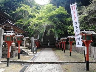 京都の狸谷山不動院