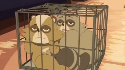 檻に入れられた狸姿の金閣と銀閣